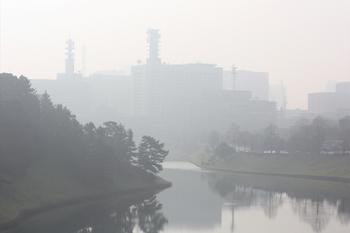 20100225_kasumigaseki.jpg